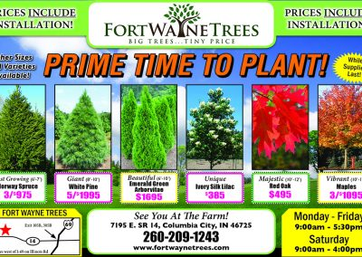 FortWayneTrees-HP-MS.10.19
