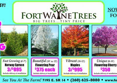 FortWayneTrees-ThirdMS.10.18