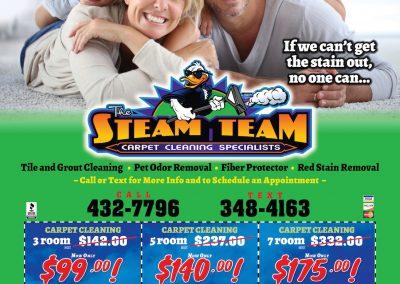 SteamTeamMS.12.182