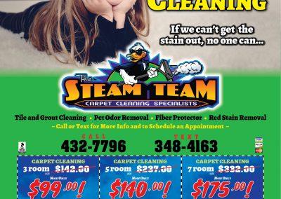 SteamTeamMS.5.18
