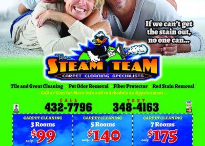 SteamTeamMS.8.19