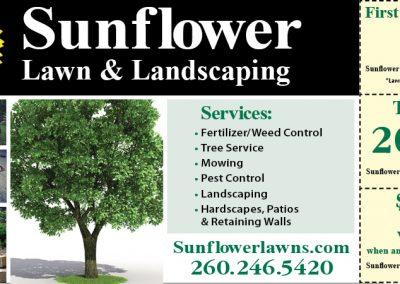 SunflowerLawnMS.5.18