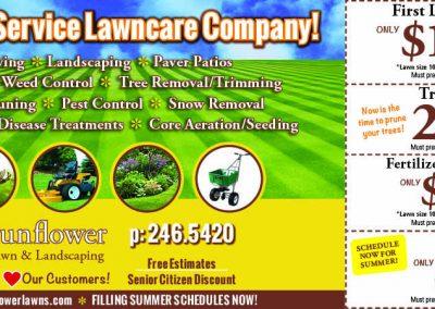 SunflowerLawnMS.7.17